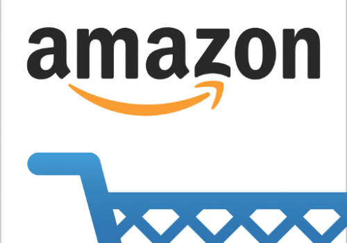 buscar nichos rentables en amazon